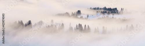 Fototapeta Mist on mountain hills panoramic view, banner. obraz