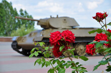 Red Roses Blooming Over Blurred Tank War Vehicle