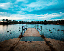 A Dock Sits Over A Geese Filled Pond In Cape May, New Jersey.