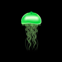 Green Jellyfish On A Black Background. Vector Illustration.