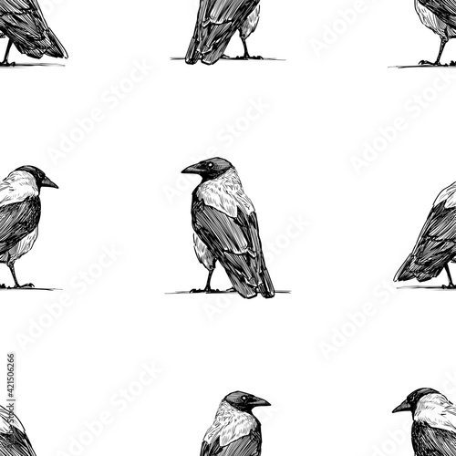 Seamless background of sketches large crows standidng and looking Fototapeta