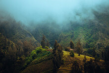 Scenic View Of Forest Against Sky During Foggy Weather. Bromo Tengger Semeru National Park.