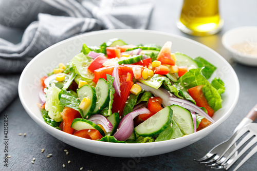 Fotografie, Obraz Vegetarian fresh vegetable organic salad with cucumber, red bell pepper, red oni
