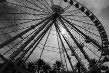 Ferris Wheel - Porto Antico - Genova