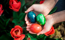 Close-up Of Person Holding Multi Colored Easter Eggs