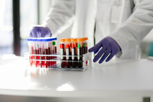 Healthcare Professional With Blood Test Tube Samples In Rack