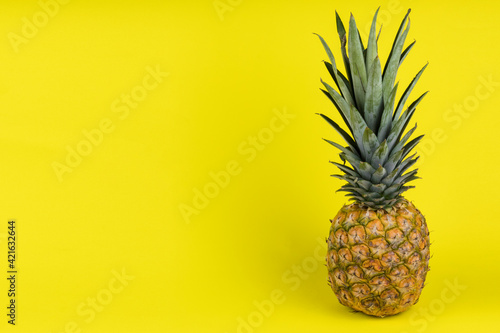 Pineapple fruit concept isolated on yellow background