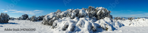Panoramic View Of Snow Covered Land Against Sky