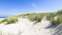 Windy Day At A White Sand Beach  Under The Blue Sky