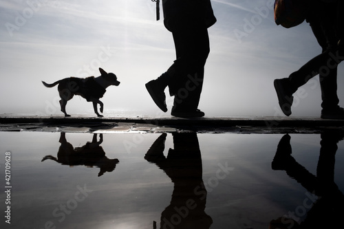 Tela Silhouette People With Dog On Lake Against Sky During Sunset