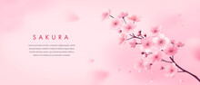 Banner Design Template. Vector Illustration Of Realistic Blossoming Sakura Flowers On Pink Watercolor Background