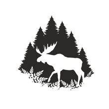 Silhouette Of A Moose In The Forest
