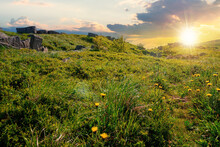 Mountain Meadow At Sunset. Cloud Rolling Above The Hill With Rocks Among The Grass In Evening Light. Warm Summer Weather. Beauty Of Carpathian Landscape In Green And Blue
