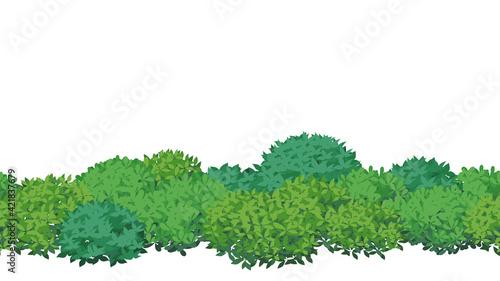 Fotografía 低木のフレームイラスト素材_木の葉の茂み_シームレス