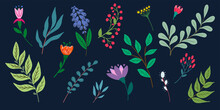 Big Set Of Flowers. Hand-drawn Colored Set Of Abstract Flowers And Branches. Vector Illustration Isolated On Dark Background. Flat Design.