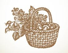 Vector Still Life Of Mushrooms, Rose Hips And Hazelnut In Basket
