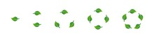 Green Leaves Recycling Icons Set. Leaves Set. Green Leaves Shapes Set. Recycling Eco Symbol. Eco Symbol, Sign, Logo, Emblem. Flat Vector Illustration. Isolated Leaves. Nature Illustration.