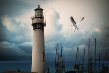 Seagull Flying Over Boats Moored By An Old Lighthouse, USA