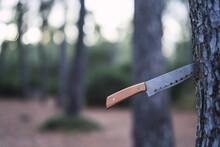 Sharp Knife On A Tree Trunk - A Decoration Idea For Halloween