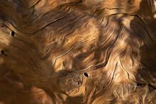 Golden Swirled Driftwood Texture