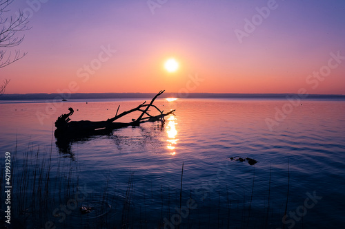 Fotografering Scenic View Of Sea Against Sky During Sunset