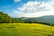 Meadows Cover With Grass And Trees On The Background Of The Mountain Range In The Morning. Nature Landscape.