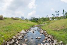 A Small Stream Near Grasslands In Jurong Lake Gardens