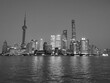 Pudong Black And White