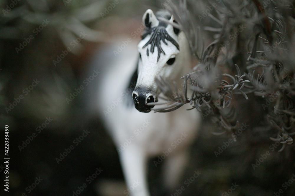 Fototapeta koń