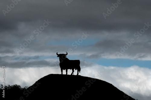 Silhouette Bull Standing Against Sky