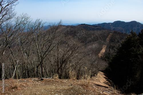 Tablou Canvas Mountain trail in winter (Mt. Sobatsubu, Okutama, Tokyo, Japan)