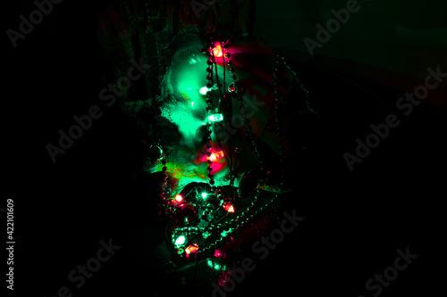 Fotografia, Obraz Christmas in a Conch Shell