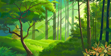 Thick Meadows Within A Dense Forest With Fauna & Flora. Rays Of Light Penetrating Through The Leaves.