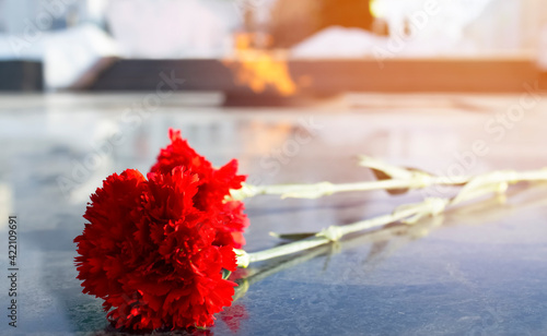 Fotografie, Obraz Carnations and Eternal flame in memory of the fallen soldiers of the Second World War
