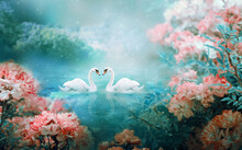 Two White Swans Couple Swimming In Lake, Fantasy Magical Enchanted Fairy Tale Landscape With Elegant Birds In Love, Fairytale Blooming Pink Rose Flower Garden On Mysterious Blue Background In Night
