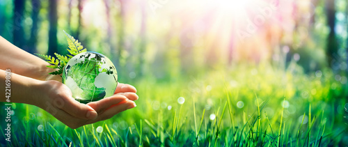 Fototapeta Environment Concept - Hands Holding Globe Glass In Green Meadow With Sunlight obraz