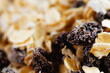 Oatmeal with raisins, cinnamon and milk. Food for athletes, vegetarians and dieters.