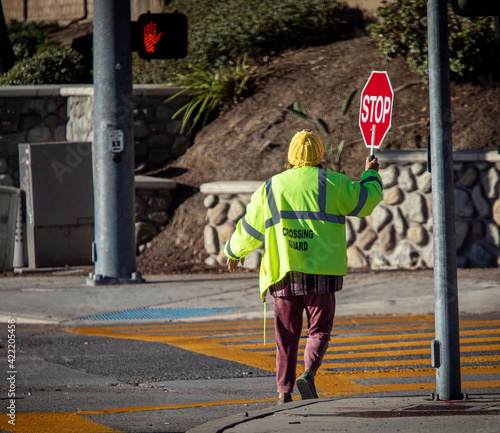 Canvas A school crossing guard holding a red stop sign while walking accross a street