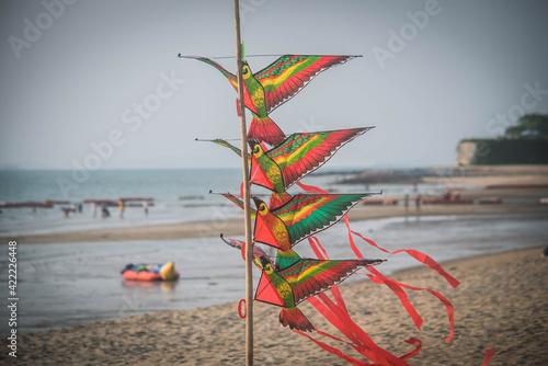 Canvastavla Kites are available for sale on the beachside, Pattaya, Thailand