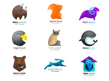 Animal Logo Collection Bull, Squirrel, Sheep, Eagle, Cat, Whale, Bear, Hare, Dog Symbol.