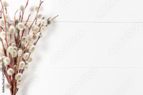 Obraz Bazie na białym drewnianym tle - fototapety do salonu