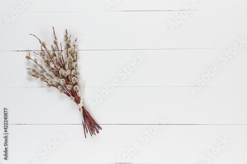 Fototapeta Bazie na białym drewnianym tle obraz na płótnie