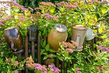 Ceramic Jugs And Flowering Shrub, Lubietova, Slovakia