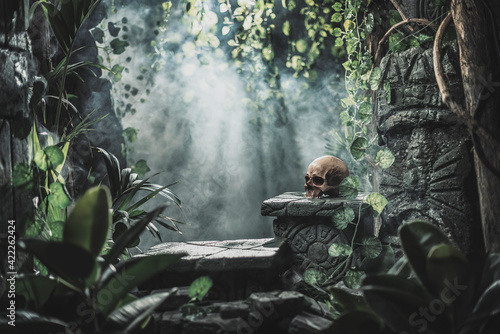 Obraz Human skull and ancient ruins in the jungle - fototapety do salonu