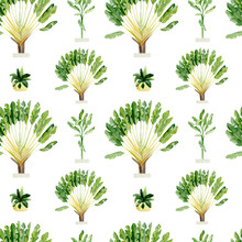 Watercolor Tropical Plants In Pots Seamless Pattern. Jungle Summer Floral, Palm Tree, Monstera, Banana Leaf For Wrapping Paper, Wallpaper Decor, Textile Fabric.