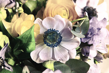 Gros Plan Sérré Sur Une Anémone Violette Dans Un Bouquet De Fleurs