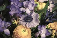 Gros Plan Sur Une Anémone Violette Dans Un Bouquet De Fleurs