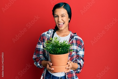 Fotografie, Tablou Beautiful hispanic woman wearing gardener shirt holding plant pot winking looking at the camera with sexy expression, cheerful and happy face