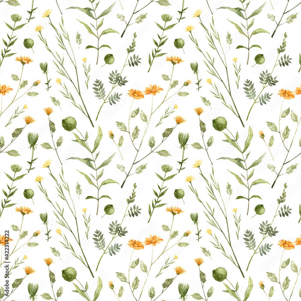 Fototapeta Seamless pattern with hand painted watercolor plants. Botanical illustration
