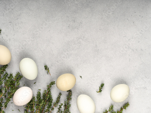 Fototapeta Sprigs of spicy thyme with eggs on a gray background top view.